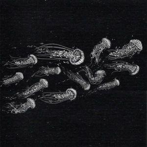 espai-povo-samarretes-baobag-sostenible-barcelona-meduses-grafic